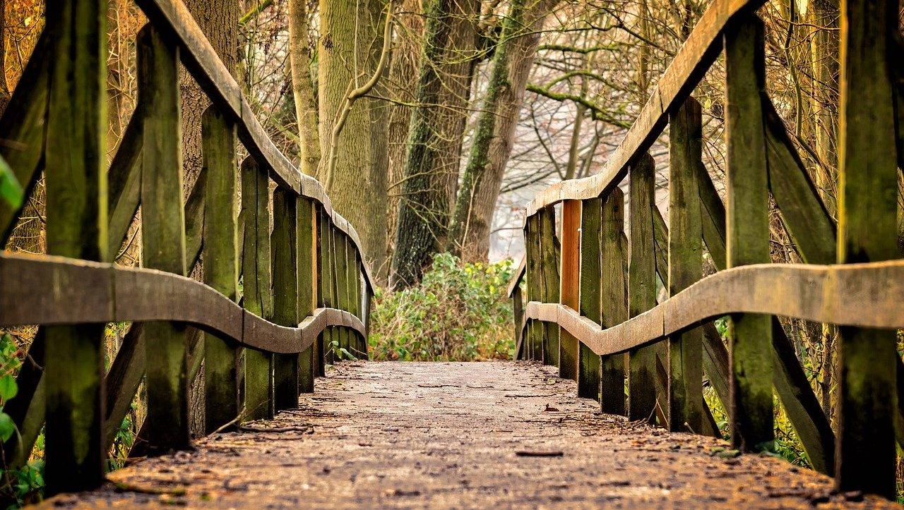 imago terapi gå over broen